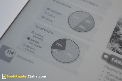 Kindle DX: visualizzazione di grafici a torta colorati