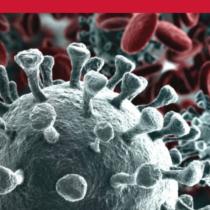Telelavoro: quel che non fece l'azienda poté il coronavirus